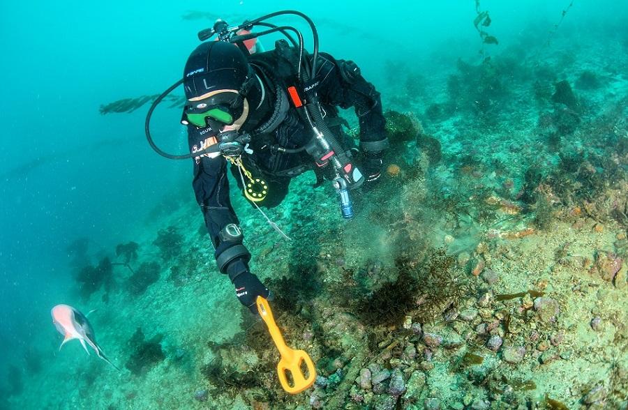 pulse dive scuba detector tector ypobryxios anixneyths metallon